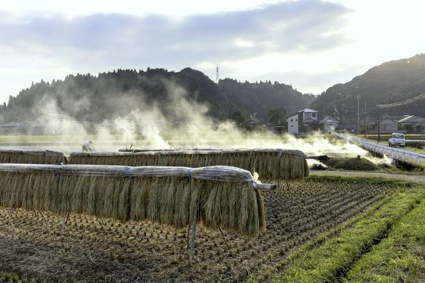 静かな田園風景の残る川辺高田地区。