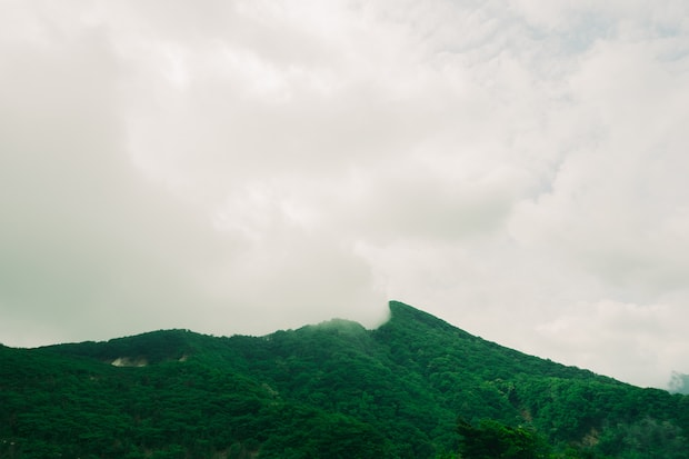 撮影:井上食堂