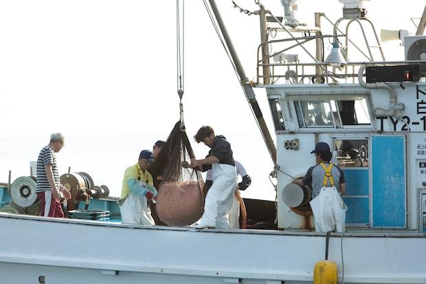 シロエビ漁の様子