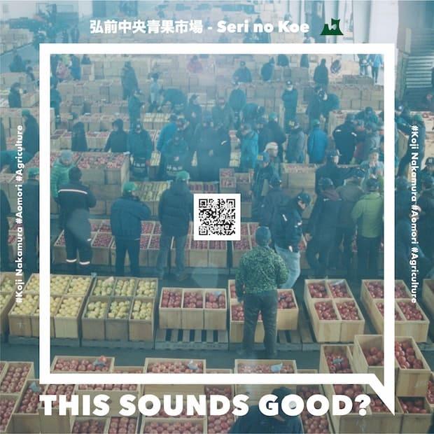 中央のQRコードから、楽曲で使われたノイズの試聴が可能。