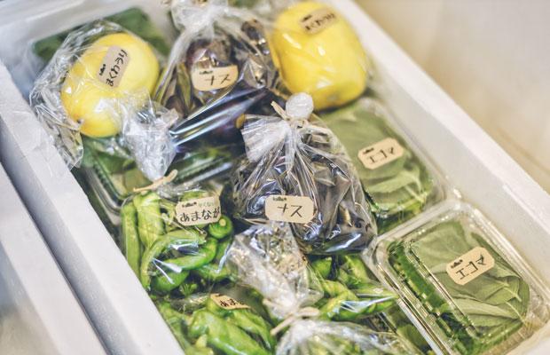 七谷野菜は店頭販売も。新鮮でリーズナブル。