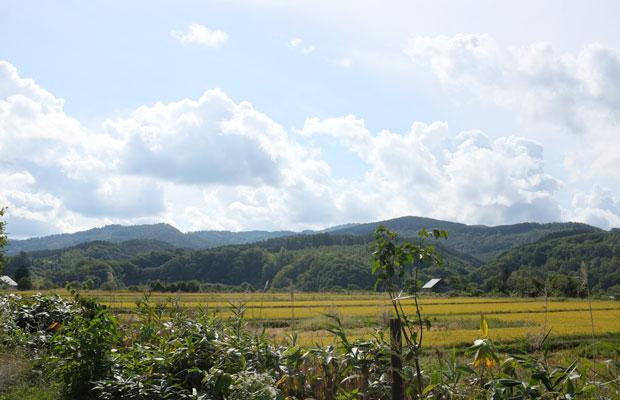 私が住む美流渡(みると)の隣の地区が毛陽。果樹園や田んぼが広がる農村地帯。