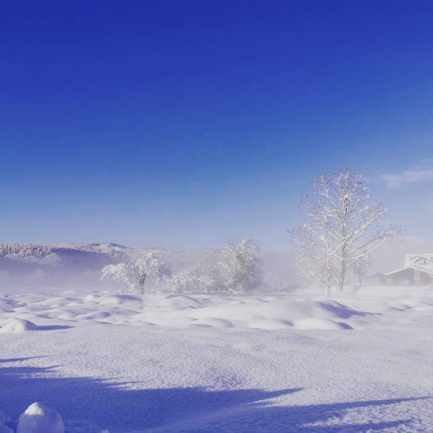 雪に覆われたルコチパーク。来年のオープン情報はFacebookでお知らせ。(撮影:瀬尾洋裕)