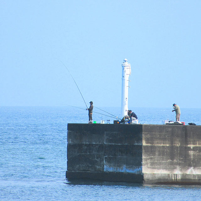 海釣りを楽しむ人