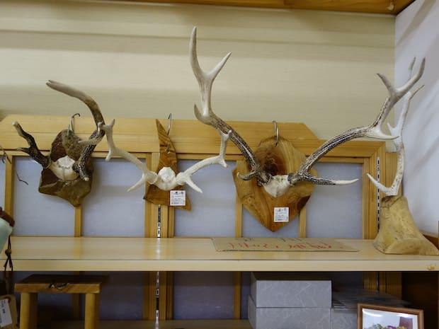 鹿の角なども販売されています。