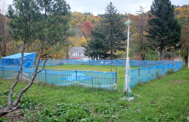 地元の人たちがつくってくれた放牧のための柵。薪を届けてくれるご近所さんもいるという。