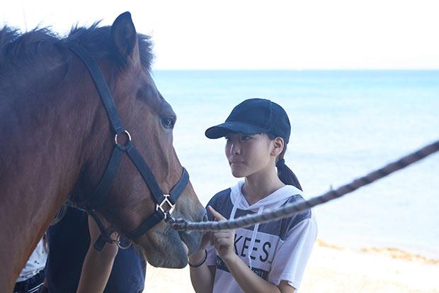 〈あわしま牧場〉では、「しおかぜ留学」の制度を利用して島の小中学校に通学している子どもたちが馬のお世話をしています。
