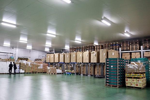 福岡ソノリク本社にある専用倉庫。徹底した品質管理のもと農作物が保管されています。