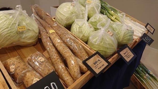 さまざまな野菜を販売!