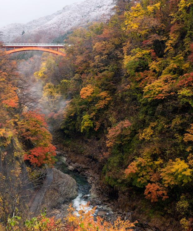 小安峡は紅葉の名所。訪れた11月中旬は雪との共演も見ることができました。