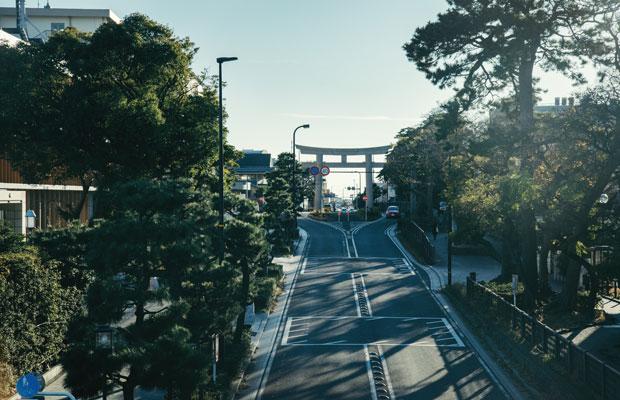 鶴岡八幡宮から海へと続く鎌倉の目抜き通り「若宮大路」。この通り沿い、古都と海の中間地点に、〈みやげ屋かかん〉が先日オープンした。