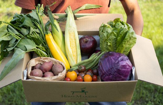 7月の旬野菜セット。とうもろこしやズッキーニ、トマトに空芯菜など。夏ー!