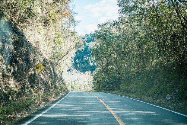 秋吉台からCOCONEELに行く途中の道。美祢は「移住、Uターンする人に対して開放的な土地」と話してくれた。