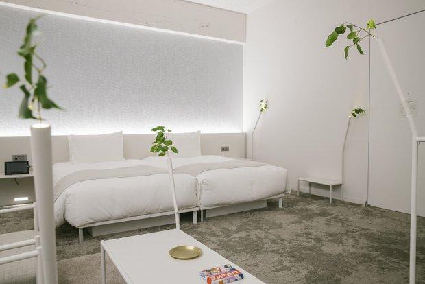 植物がアチコチから「生えている」ような部屋。