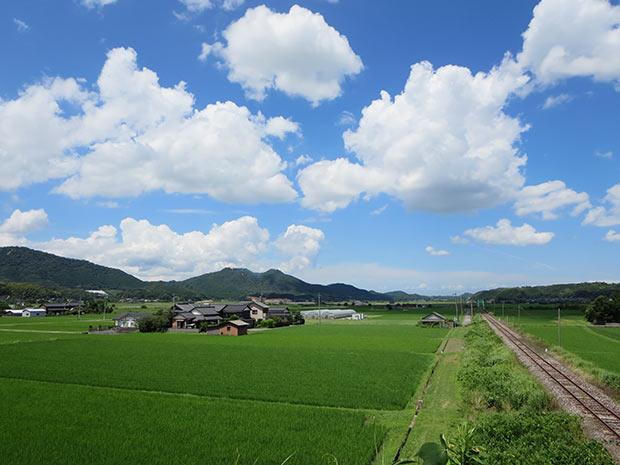 京都平野から見上げる馬ヶ岳(行橋市)。