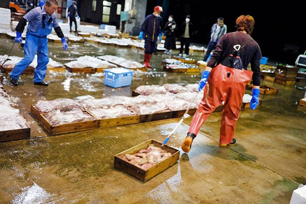沖合底引き網船〈浜吉丸〉の操業は、金曜朝に出港したら翌週木曜のセリに間に合うように木曜0時までに戻ってくる。多いときで150種類くらいの魚種を荷揚げする。この日、船から荷揚げされた木箱は合計1700個。
