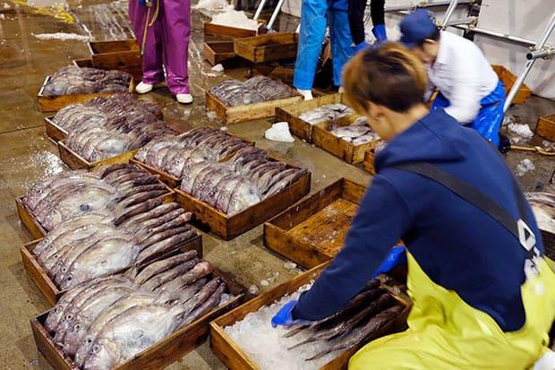漁で持ち帰った魚は大事な商品。海の上から仲買人の手に渡るまで、乗組員の手によって丁寧に扱われていた。魚の種類ごとに担当者がおり、船上ではそれぞれが担当して作業を行う。