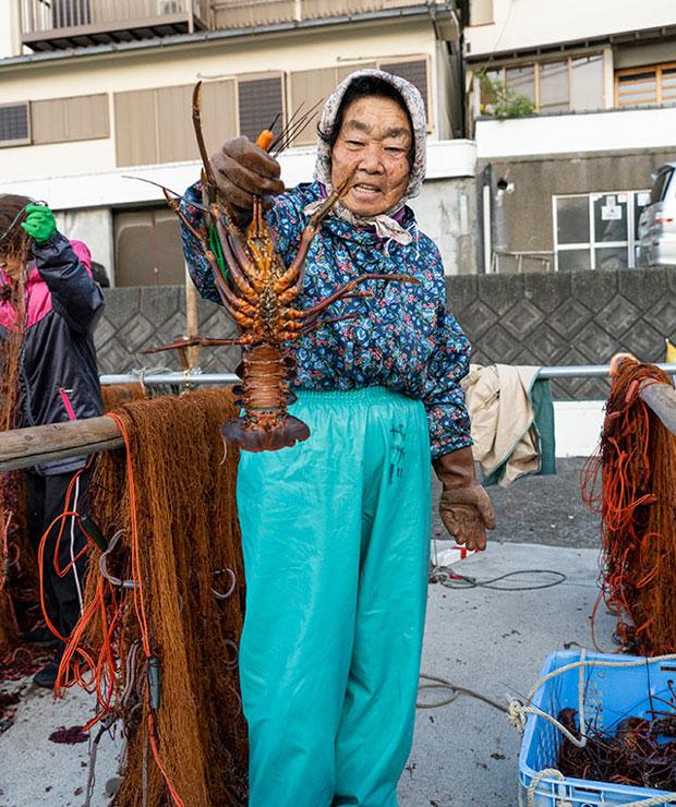 伊勢海老やアワビなどをいただくことも。記事では伊勢海老の茹で方や、漁師さんの食べ方も紹介。