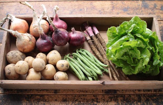 収穫した野菜を販売してみようと撮影。最初の年は野菜の売り上げは本当に微々たるものだったけど、まずはやってみようといろいろ挑戦してました。