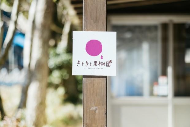 ぶどうの粒をイメージしたきときと果樹園のロゴマーク。素朴なイラストと文字が、田中さんご夫妻の人柄とも重なる。