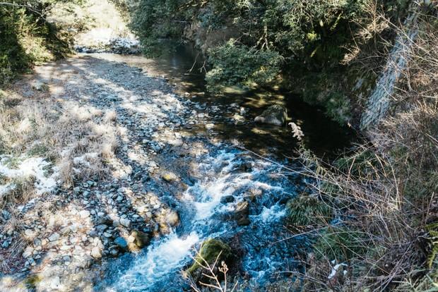 きときと果樹園のそばを流れる錦川。