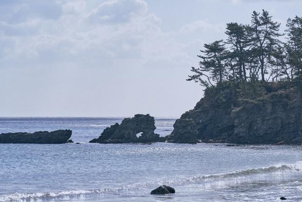 太平洋を望む洋野町。マリンレジャーから豊かな海産物まで洋野町の暮らしを育む。