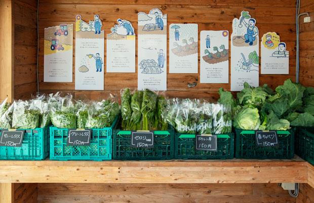 """直売所内に並べられた新鮮な野菜たち。壁には、石井さんが野菜づくりで大切にしている""""思い""""を日立が絵本にしたものが飾られている。"""