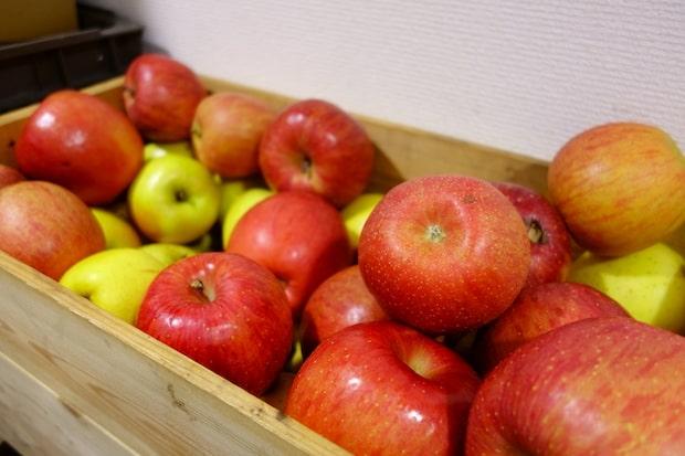 りんご5個と引き換えに、1本のシードルを差し上げますという企画で、約1か月の募集期間に総勢175組が店へ持参してくれたそう。