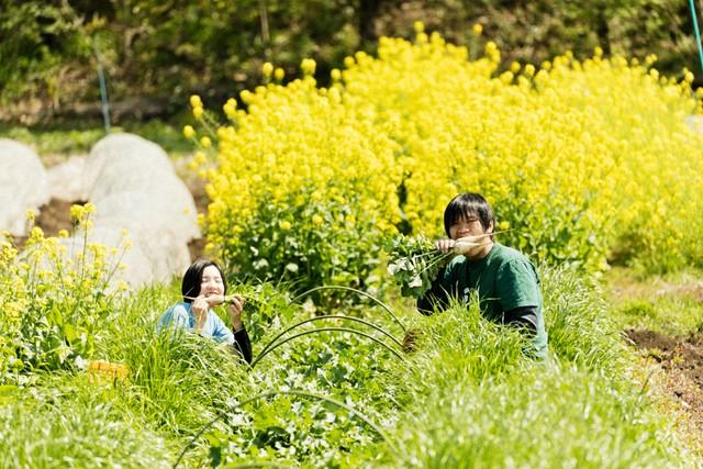 小松菜の菜の花をバックに、採りたてをかじる。