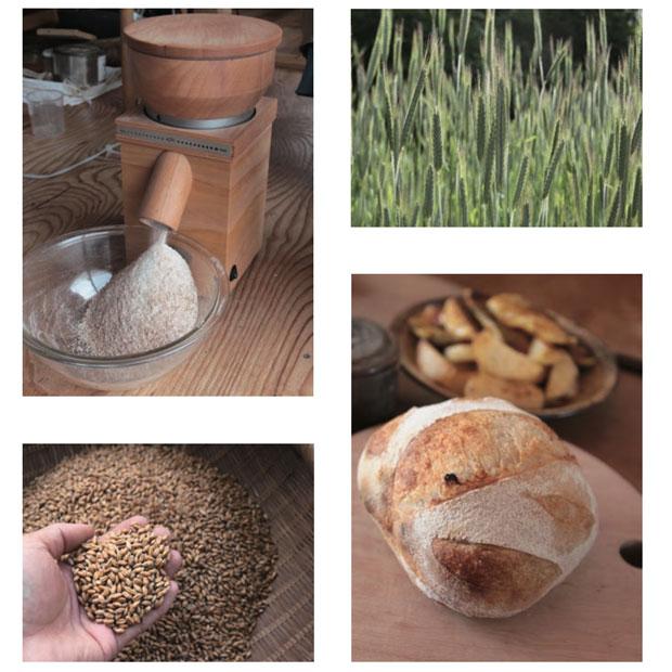 吉澤さんが撮影した写真より。自ら小麦を育て製粉して、薪ストーブでパンを焼く。