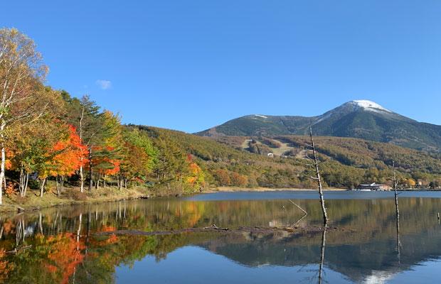 高原エリアは白樺や女神湖、スキー場や別荘地で有名。