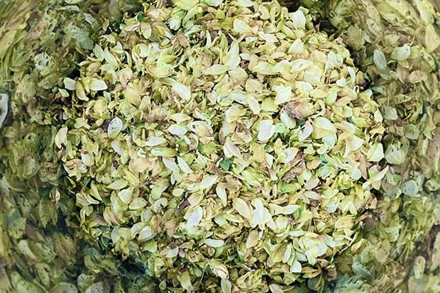 東洋のホップと呼ばれる唐花草。花酛は現代のビールの製法に近いのだそう。
