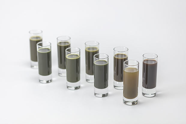 〈Maruzen Tea Roastery (マルゼンティーロースタリー)〉では、厳選した一番茶のみを使い、同じ茶葉を温度別に焙煎した、お茶のシロップを用意。