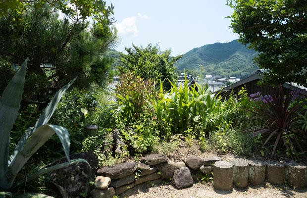 庭の緑も庭越しに眺める山の緑も夏に向かって濃くなっていきます。