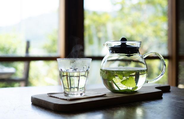 摘みたてのハーブにお湯を注ぐだけで爽やかなハーブティーとして飲めます。