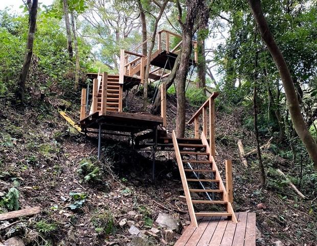 学校の校庭から森へと続く階段。