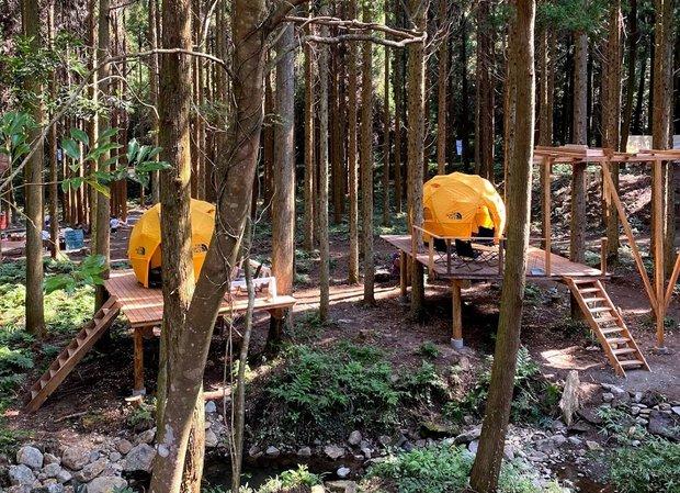 ウッドデッキで森の中でも快適なキャンプ。