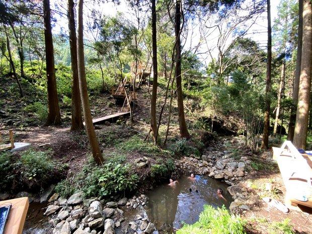 湧き水の小川のプールには小魚や川エビもいます。