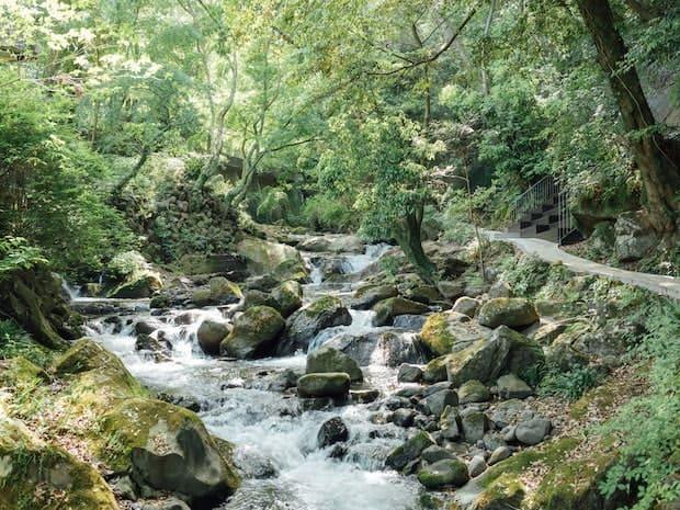 美しい自然の中にある湯河原万葉公園