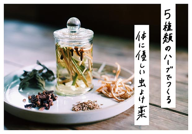 「5種類のハーブでつくる、体にやさしい虫よけ薬」オリジナルキットのイメージ画像