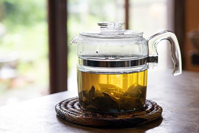 ティーポットに入った枇杷の葉のお茶