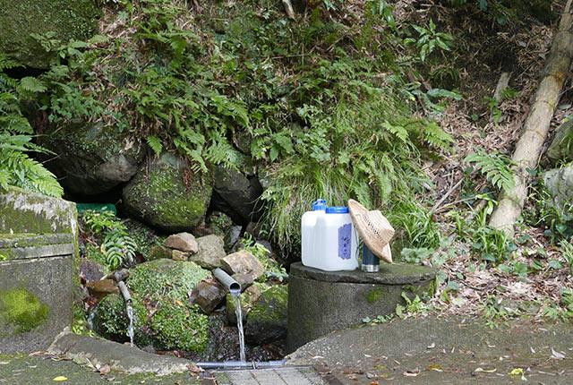 山から流れ出る湧き水