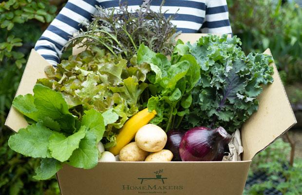 〈HOMEMAKERS〉の基本の旬野菜セットは9品ほどの旬の野菜を組み合わせています。