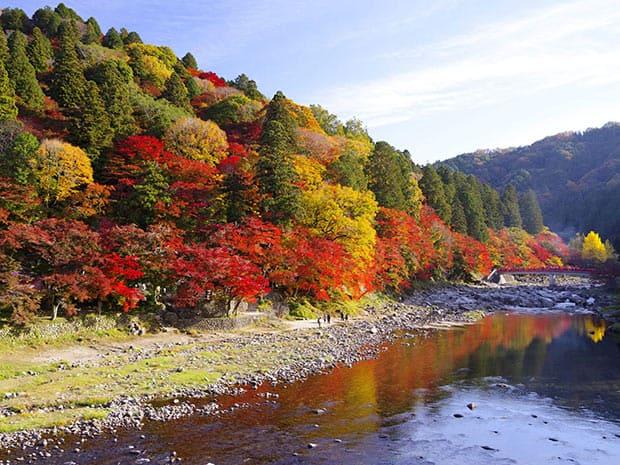 秋の香嵐渓。