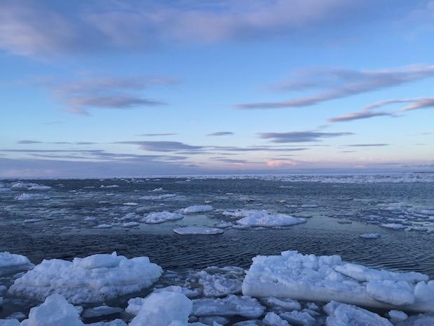 接岸目前の流氷を見る