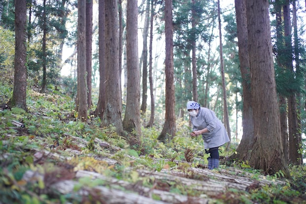キノコや山菜は、山仕事が得意なメンバーが自ら採ってきたものを調理します。(撮影:船橋陽馬)