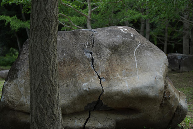 現代美術作家・柳幸典による〈石霊の森(いしだまのもり)〉。